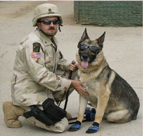 WeCanHelp.USWarDogs.August2015