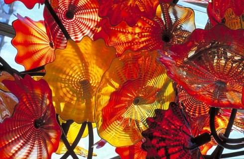 Chihuly.OrangeFlowers.july2017