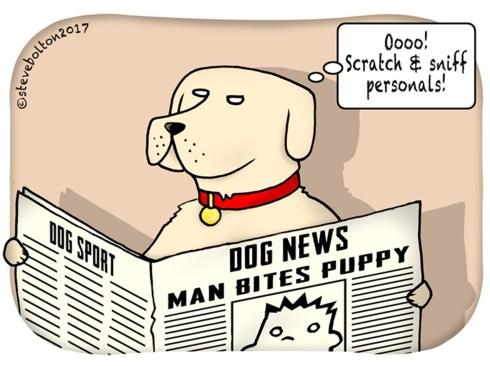7.DogNews.mar2018