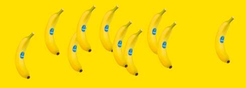 6.GoBananas.jul2018.jpg